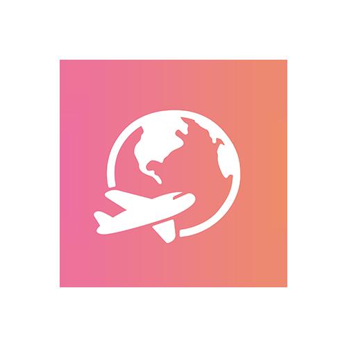 Logo Versandkosten Ausland Flugzeug