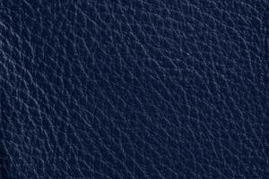 Luxury Leder Sitzsack Mitternachts-Blau