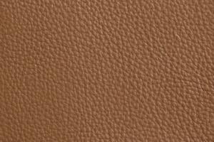 Luxury Leder Sitzsack Dunkelbeige