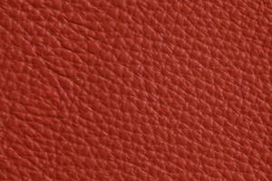 Luxury Leder Sitzsack Rost-Rot