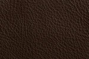 Luxury Leder Sitzsack Coffee Braun